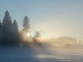 freiberge-nebel